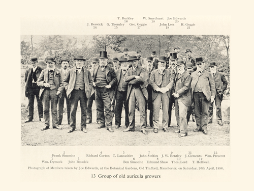 A Group of Serious Florists 1896